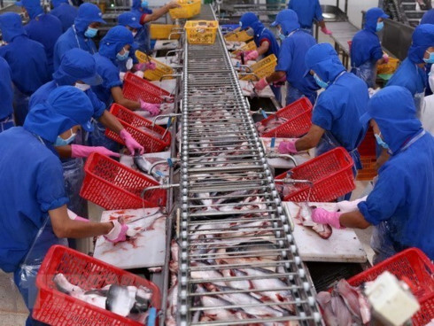 Export of aquatic products forecast to grow 8 percent in Q2