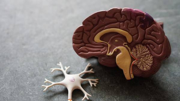 Benefits of vitamin B12 5000 mcg for your brain & cognitive function