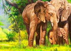 Elephant, Wildlife Paitning