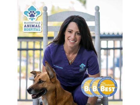 Animal Exam & Vaccines