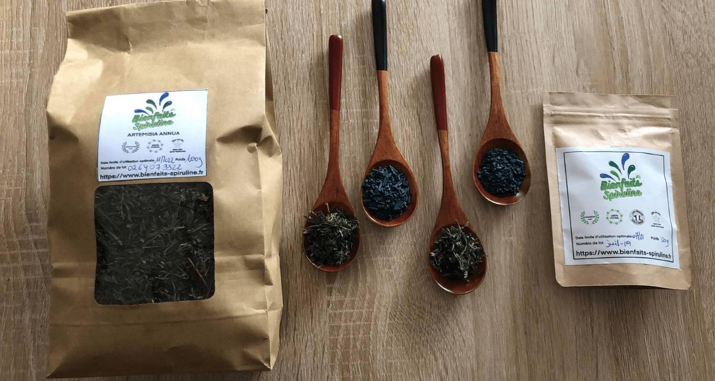 Artemisia annua et spiruline