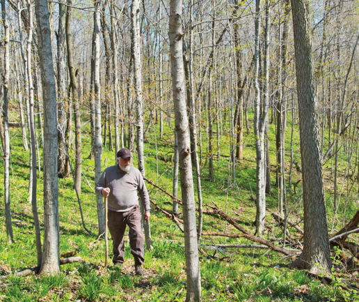 Picture for Land Conservation Fund Grants Available