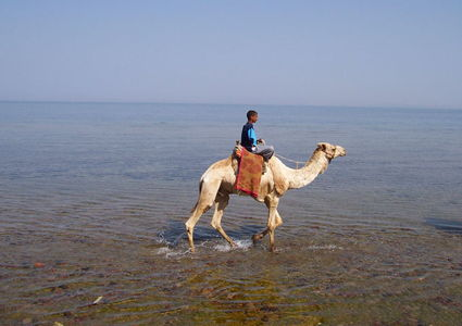 another-part-of-egypt