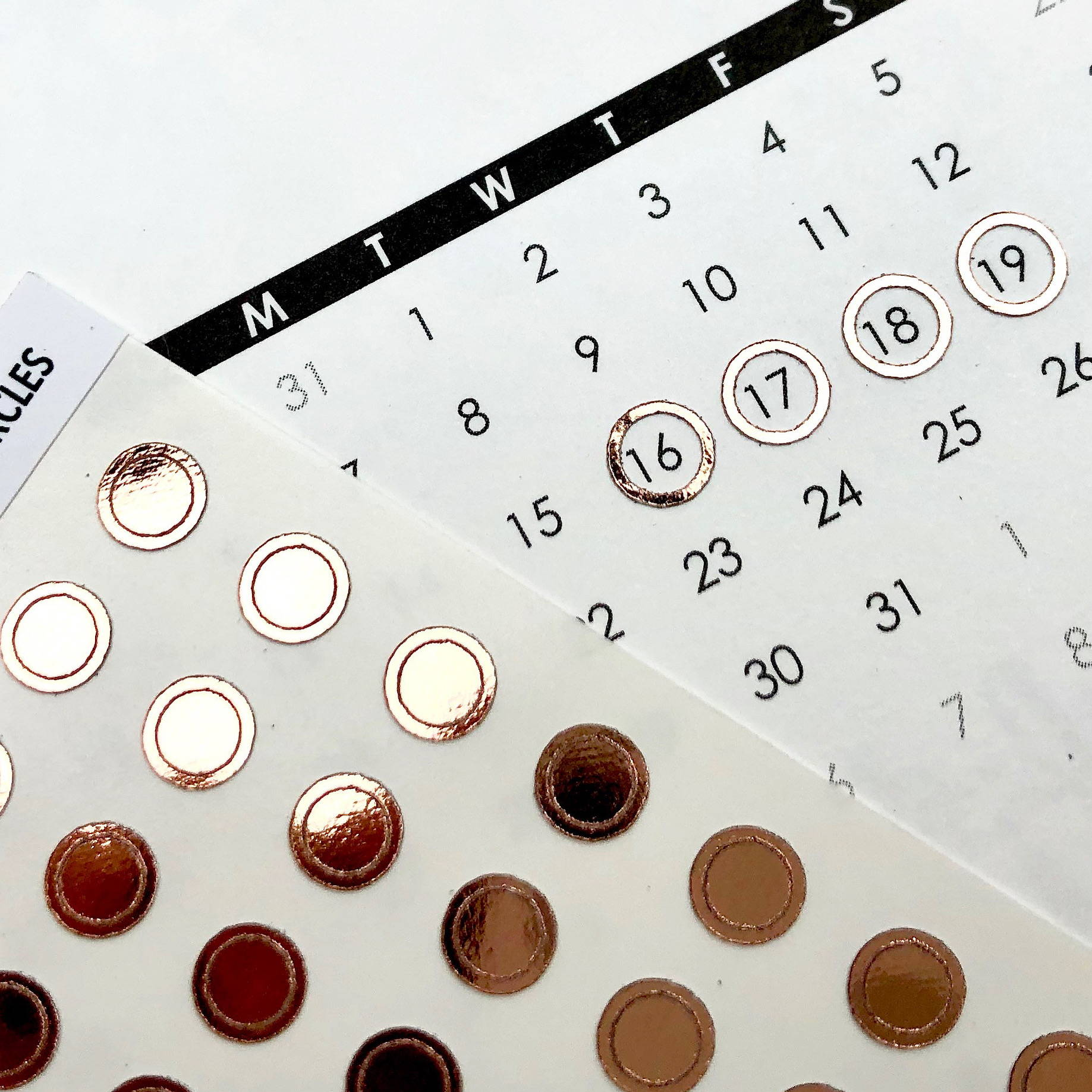 foiled planner sticker date circles rose gold