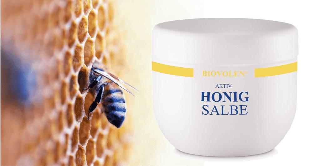 Biovolen Aktiv Honigsalbe Test
