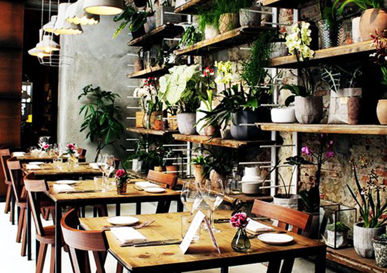 indoor planting design