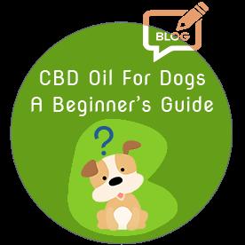 crayolex-beginner-guide-cbd