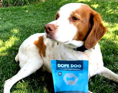 Dope Dog CBD Pet Products - Shop now pay later!