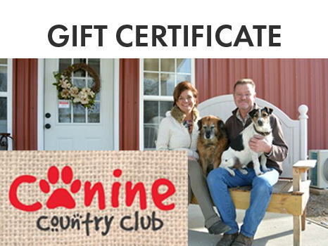 Canine Country Club $100 Gift Certificate