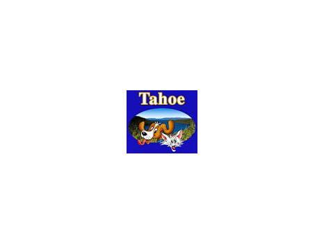Tahoe Best Friends Doggie Daycare!