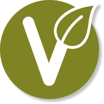 vegan smoothie