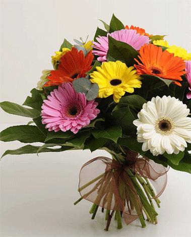 HF Friendly Gerbera Bouquet