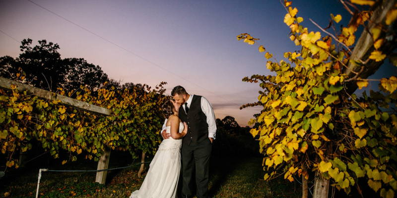 An Intimate Vineyard Wedding