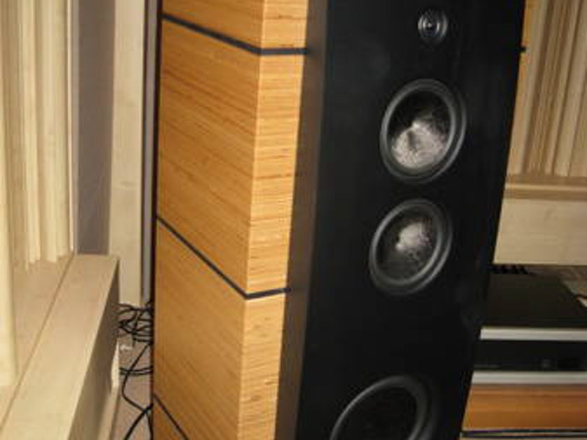 Magico M5 Simply Gorgeous! Priced to Sell!