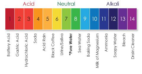 Free acid alkaline food chart avocadoninja