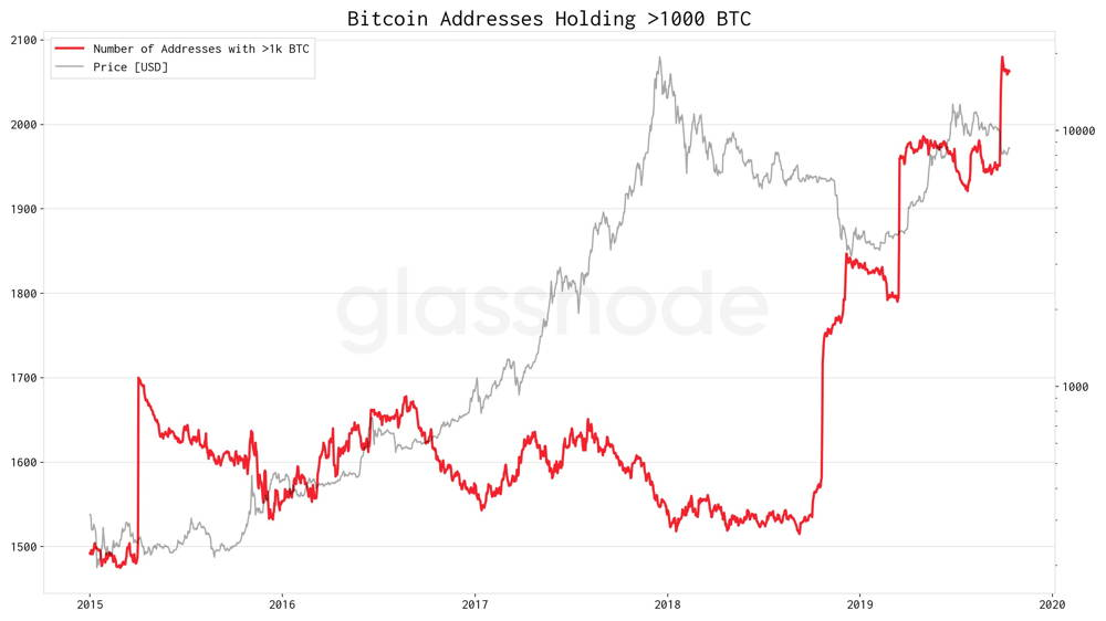 addresses of bitcoin holding over 1000 BTC