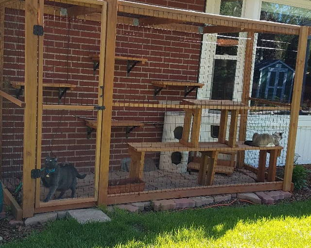 Cat house, catio, outdoor cat home, cat pen, cat tent, cat enclosure