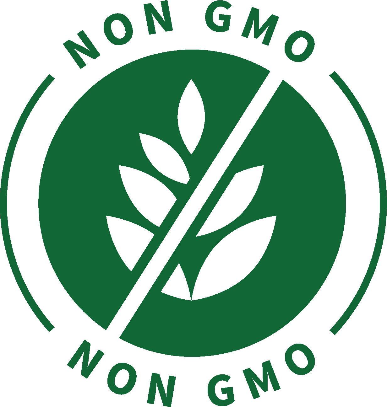 Non gmo ingredients icon