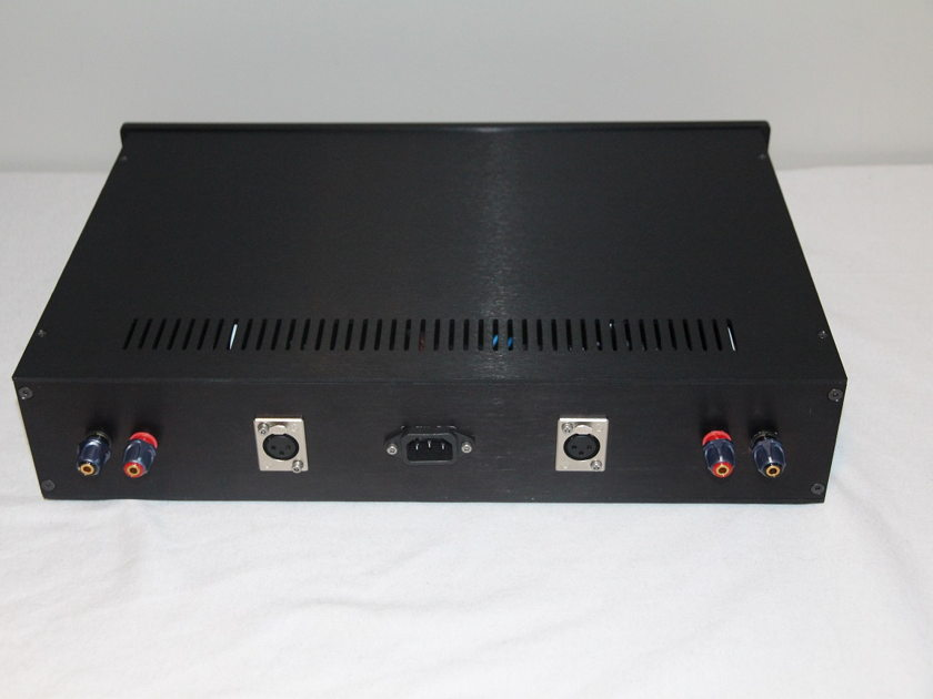Hypex Ncore NC400 / SMPS600 Custom Dual Mono Amp Build