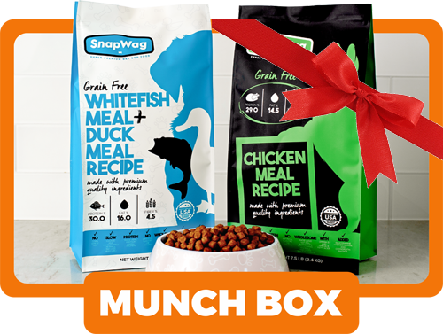 Gift Box For Dog Lovers - Munch Box