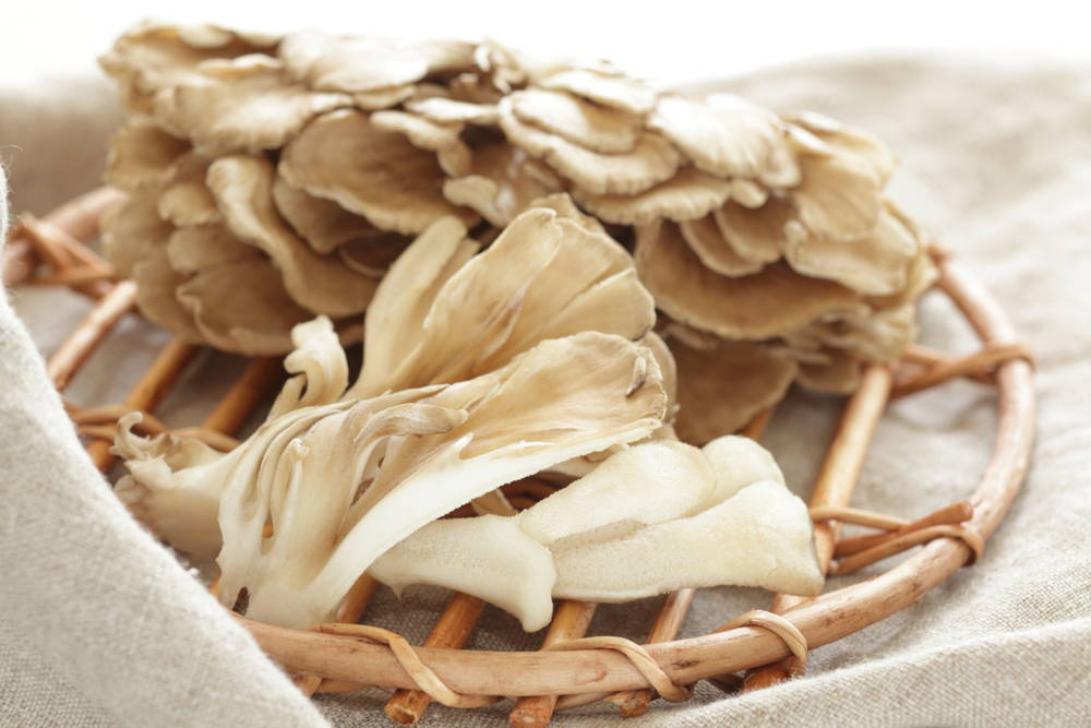 Maitake mushroom in basket on table