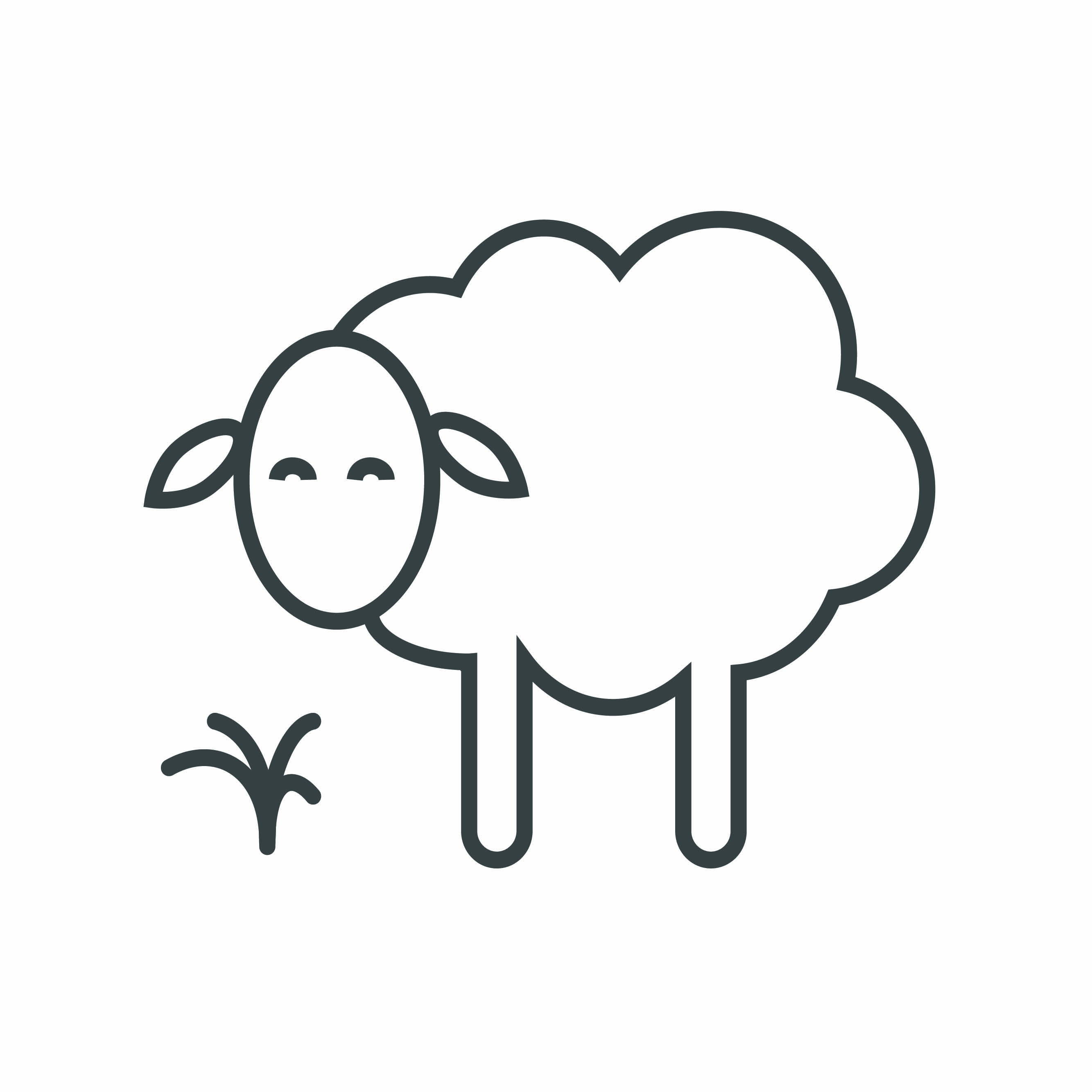 Pure wool icon