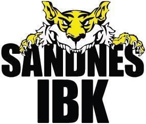 Sandnes Innebandy - Sportsklær på nett - Proffsport.no