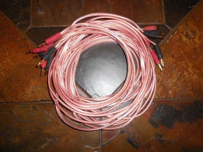 Monster 12 gauge Speaker cables
