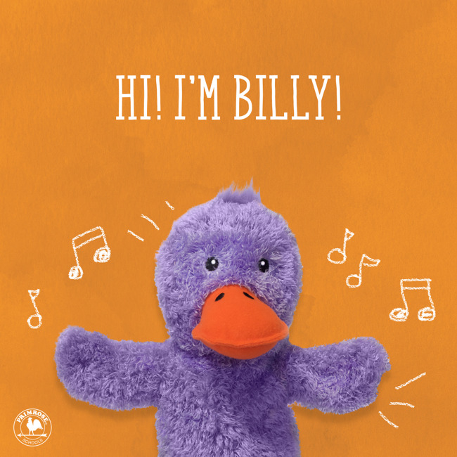 billy the duck, friend of the month, january 2020