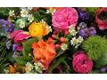Paradise Florist - $20 Gift Card
