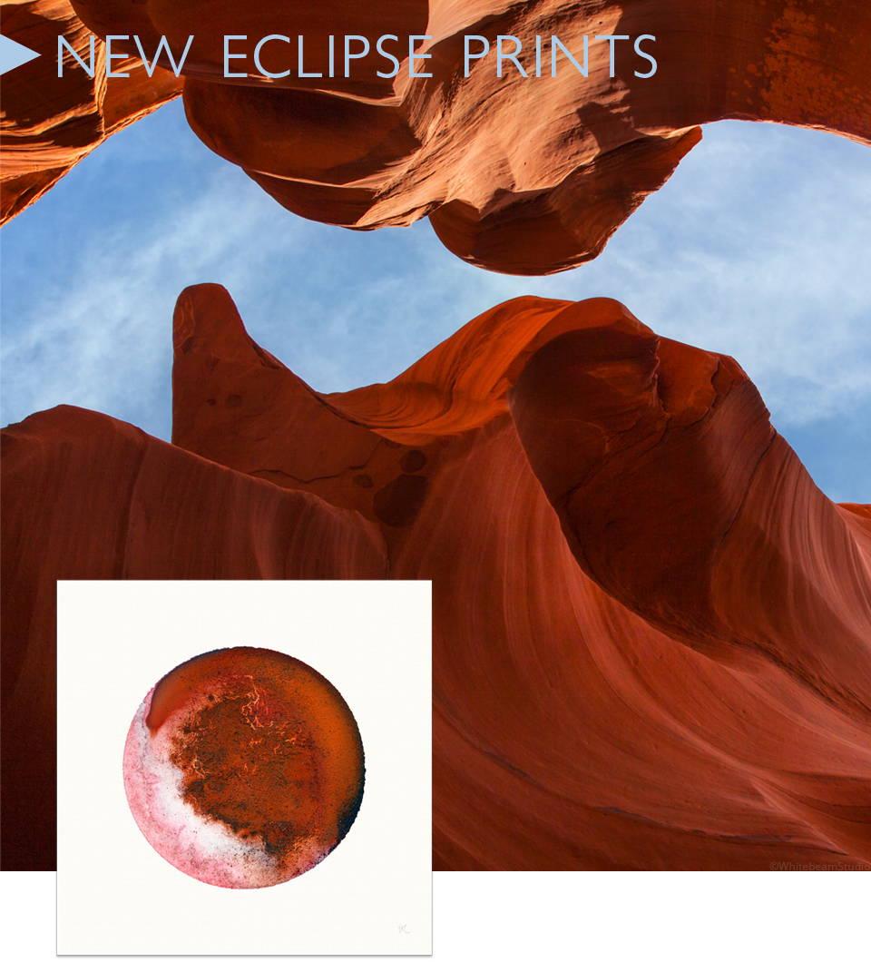 Whitebeam Eclipse
