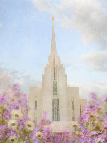 Rexburg Temple picture with lavendar flowers in the foreground.