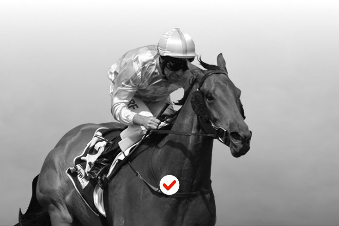 2021 Travers Stakes Picks