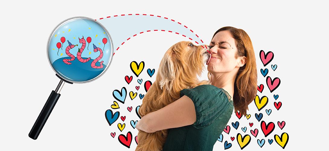 vetevo Wurmstudie 2019 - Hund küsst Frau - Titelbild