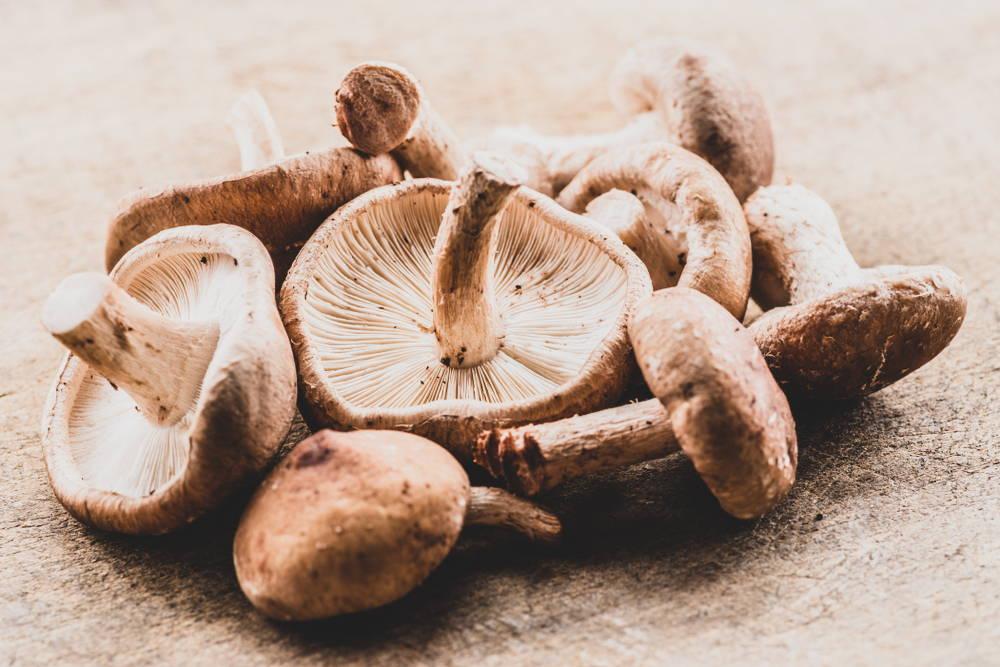 Shiitake, a superfood mushroom for heart health and immunity