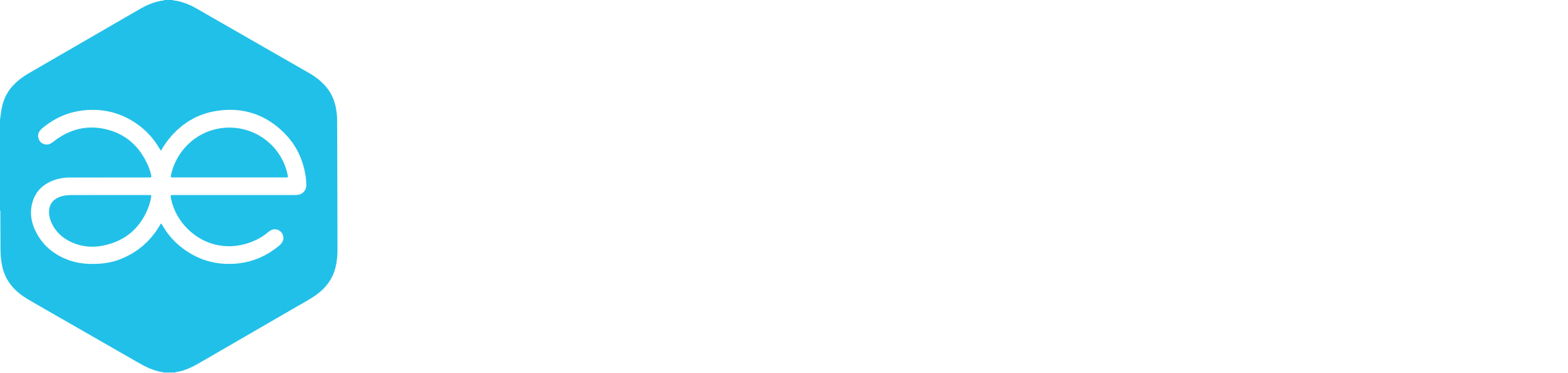 Ae logo white 1