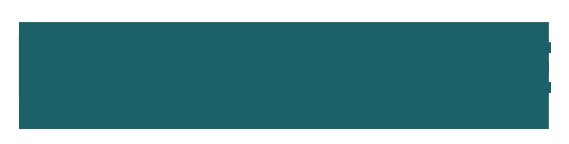Woocommerce logo2