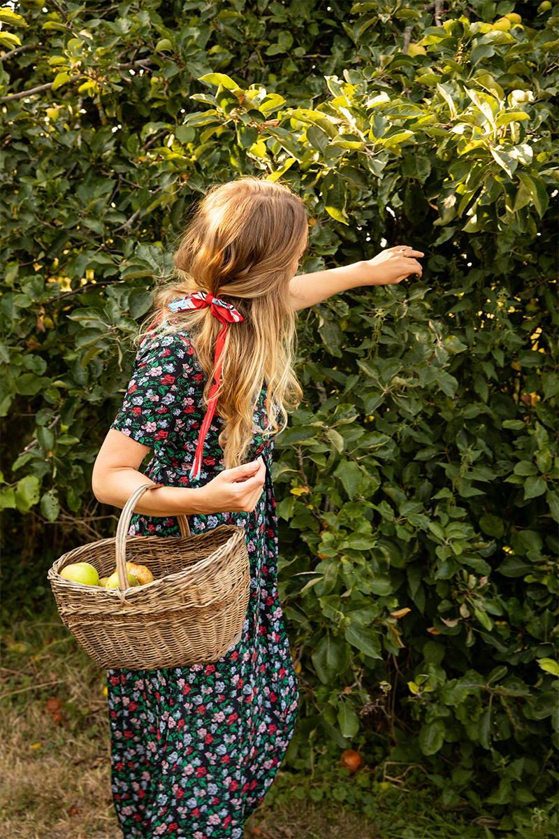 Tess Newall picks apples from her garden in YOLKE's Juniper Dress