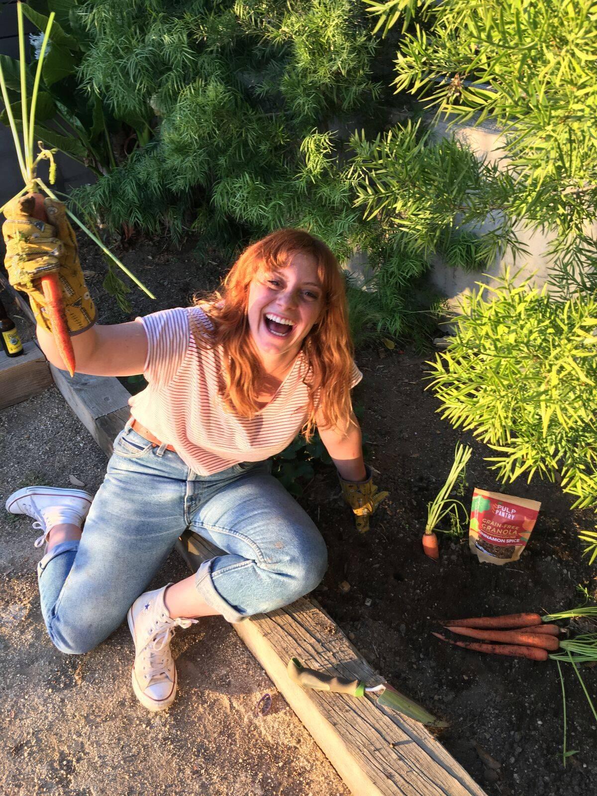 Gardening organic carrots