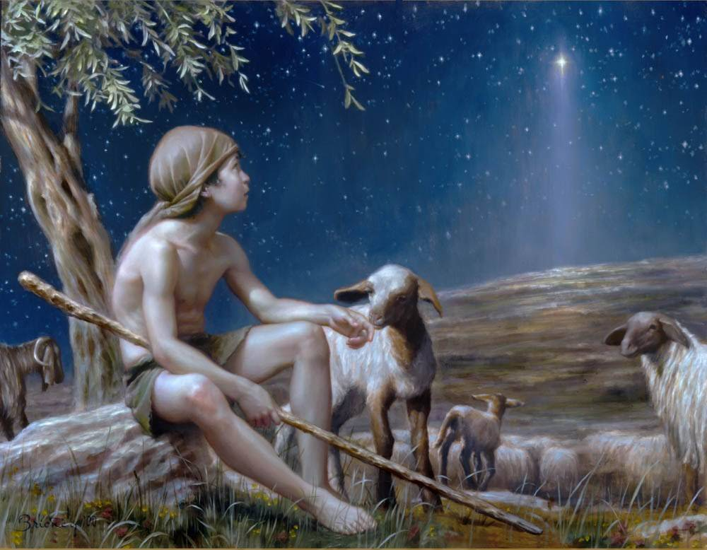 LDS Nativity art print of a shepherd boy sitting among his flock staring up at the new star.
