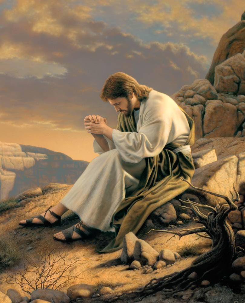 LDS art painting of Jesus fasting and praying in the wilderness.