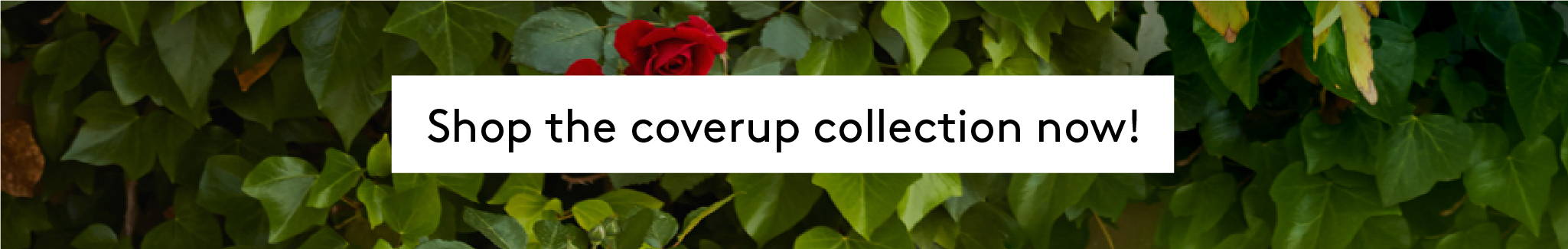 Shop the COVERUP collection now!