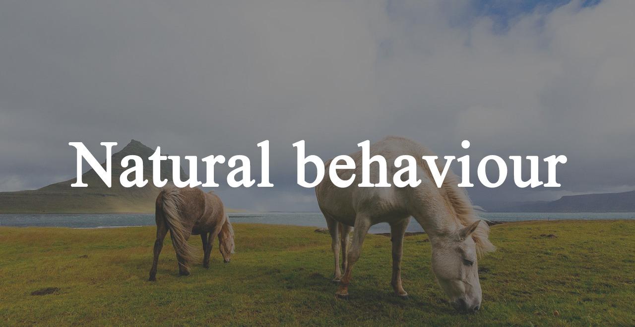 Natural behaviour