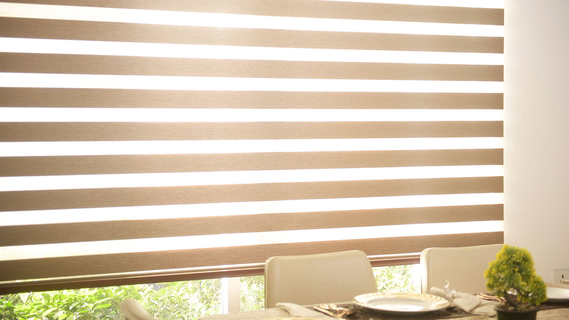 Blockout Zebra Blinds Australia