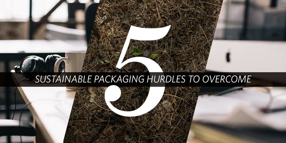 5 Sustainable Hurdles to Overcome