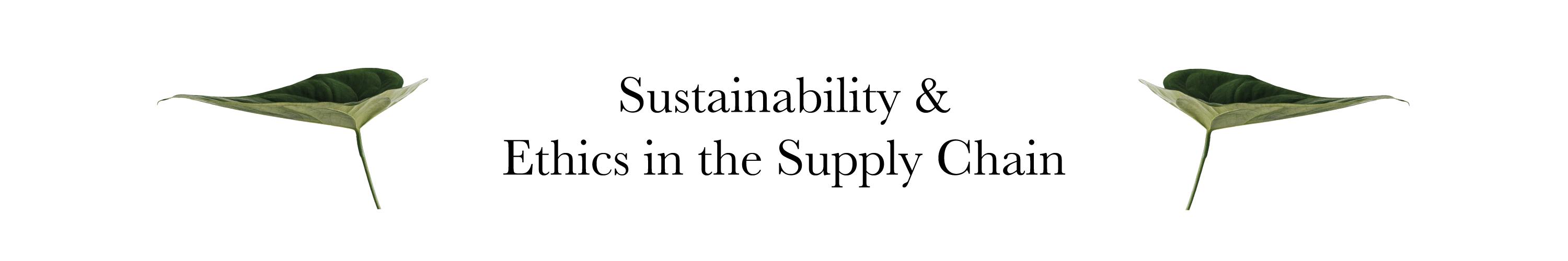 Sustainability and ethics in the fashion supply chain