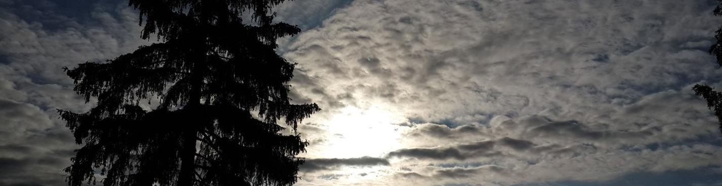 Белогорка - заброшенный рай