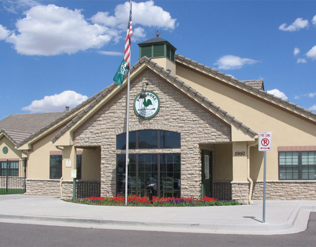 Exterior of the Primrose school of Saddle rock