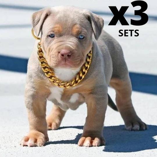 Cuban Dog Chain, Dog Gold Chain Collar,  Gold lInk dog collar, Pitbull Dog Gold Chain