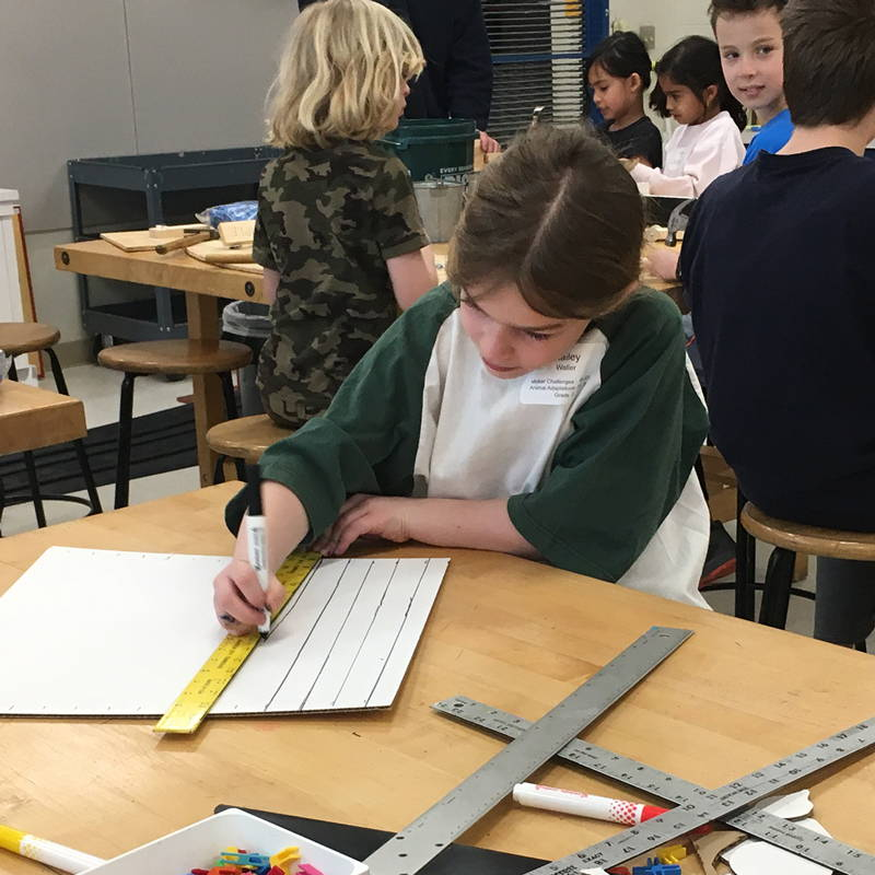 cardboard tiny house student geometry and measurement grade 3-5